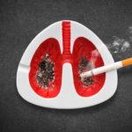 Rokok Mutlak Hadirkan Sel Kanker Paru-Paru (3)